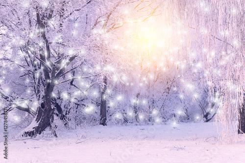 Foto op Aluminium Purper Rising sun shines on white snowflakes