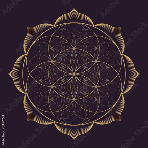 vector mandala sacred geometry illustration. Fototapete