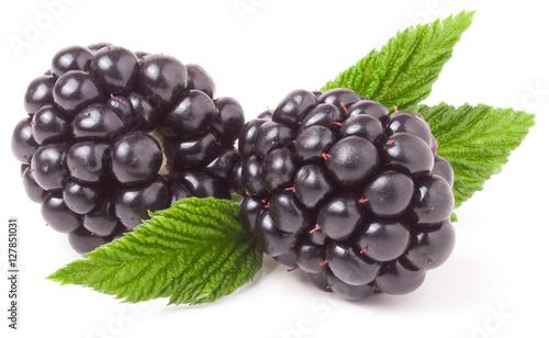 Fotografia, Obraz  blackberry with leaf isolated on a white background closeup