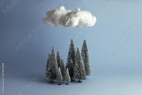 Fotografía  Bodegón mininalista de bosque en invierno sobre el que flota una nube