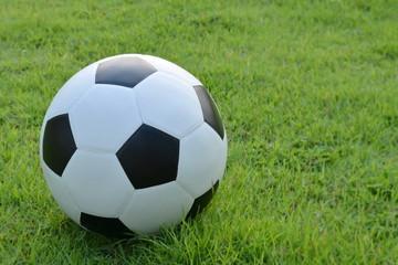 fototapeta piłka nożna klasyczna  na trawniku