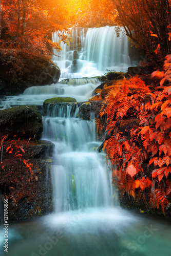 Foto op Aluminium Watervallen beautiful waterfall in rain forest, Thailand