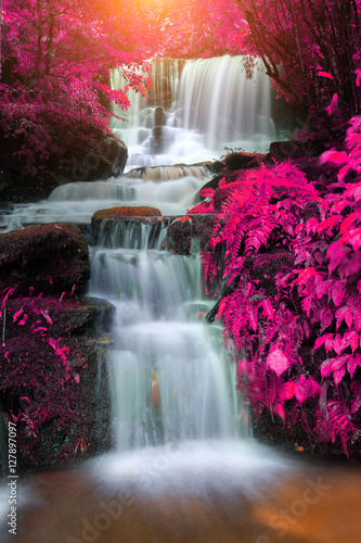 Photo sur Aluminium Cascade beautiful waterfall in rain forest, Thailand