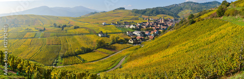Niedermorschwih, Alsatian vineyards, Alsace, France, Europe, Autumn, Mountain, Wallpaper Mural