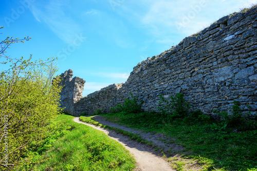 Foto op Canvas Olijf Ruin of medieval stone wall Kremenets, Ukraine