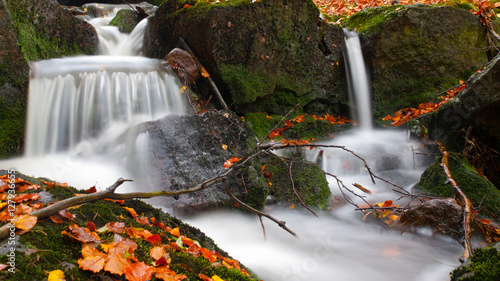 Fototapeta Autumnal mood in the forest with small creek waterfalls. Long exposure shot with blurred silky water stream.