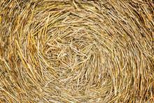 Closeup Of Golden Hay Roll Circular Haystack Showing Straw Texture