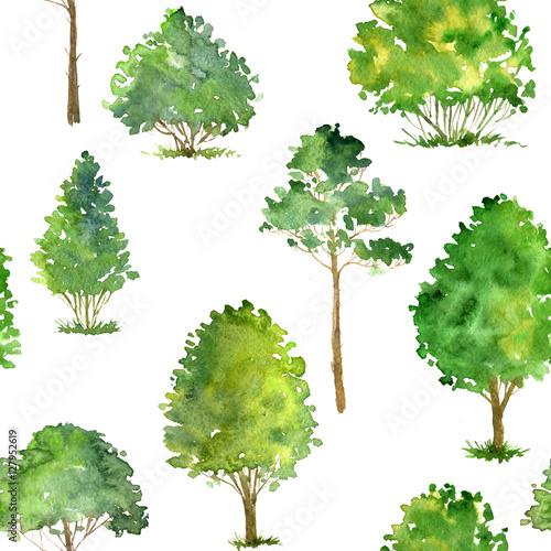wzor-z-drzew-akwarela-rysunek