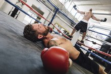 Knocked Out Boxer Lying In Boxing Ring