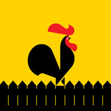 Black Rooster On A Fence. Mode...
