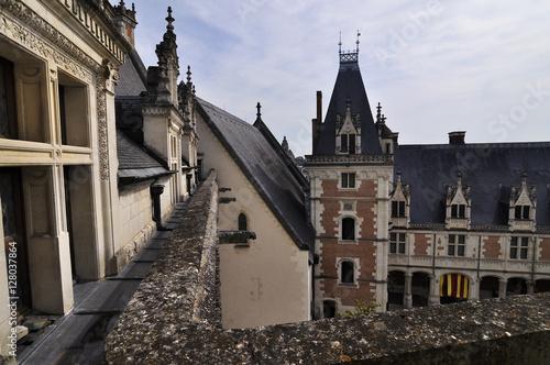 Photo  Royal Chateau of Amboise
