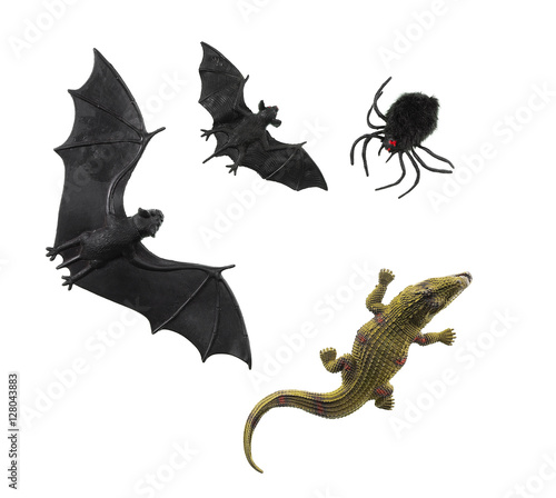 bats, spider, crocodile