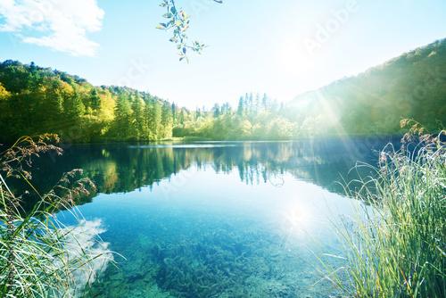 Fotobehang Landschap lake in forest, Croatia, Plitvice