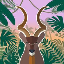 Koodoo On The Jungle Background