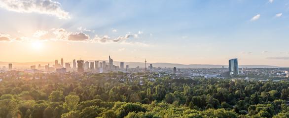 Fototapeta na wymiar Frankfurt Skyline