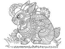 Rabbit Bunny Coloring Book For...