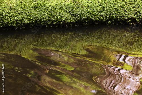 Aluminium Prints Rice fields Saiho-ji Japan