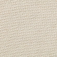Close Up Bagasse Paper Texture