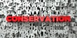 CONSERVATION - Red text on typography background - 3D rendered royalty free stock image. This image can be used for an online website banner ad or a print postcard.