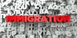 IMMIGRATION - Red text on typography background - 3D rendered royalty free stock image. This image can be used for an online website banner ad or a print postcard.