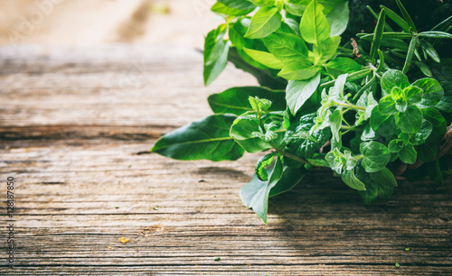 Fotografering Variety of herbs on wooden background