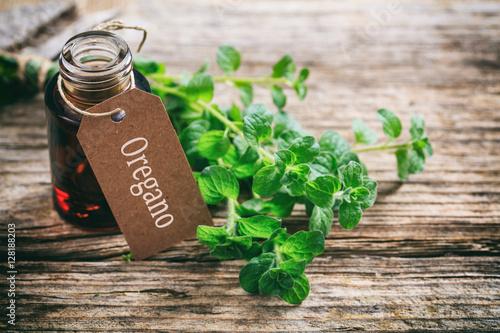 Photo  Fresh oregano twig on wooden background