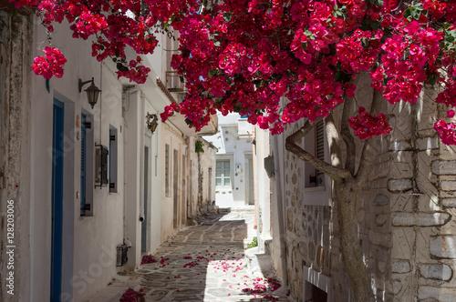Fotografie, Obraz  Gasse auf Samos, Griechenland