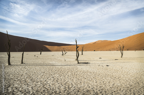 Foto op Aluminium Blauw Dead vlei with red dunes at background