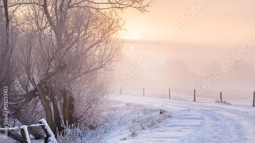 Fotografie, Obraz  Great nice cozy winter landscape in the Netherlands