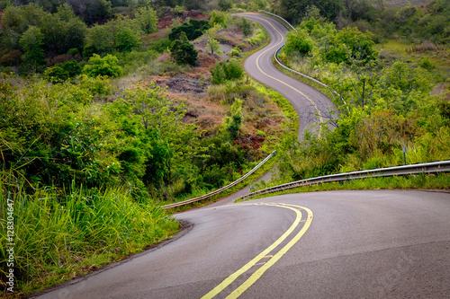 sceniczny-widok-waska-curvy-droga-i-wiejski-krajobraz-kauai-hawaje