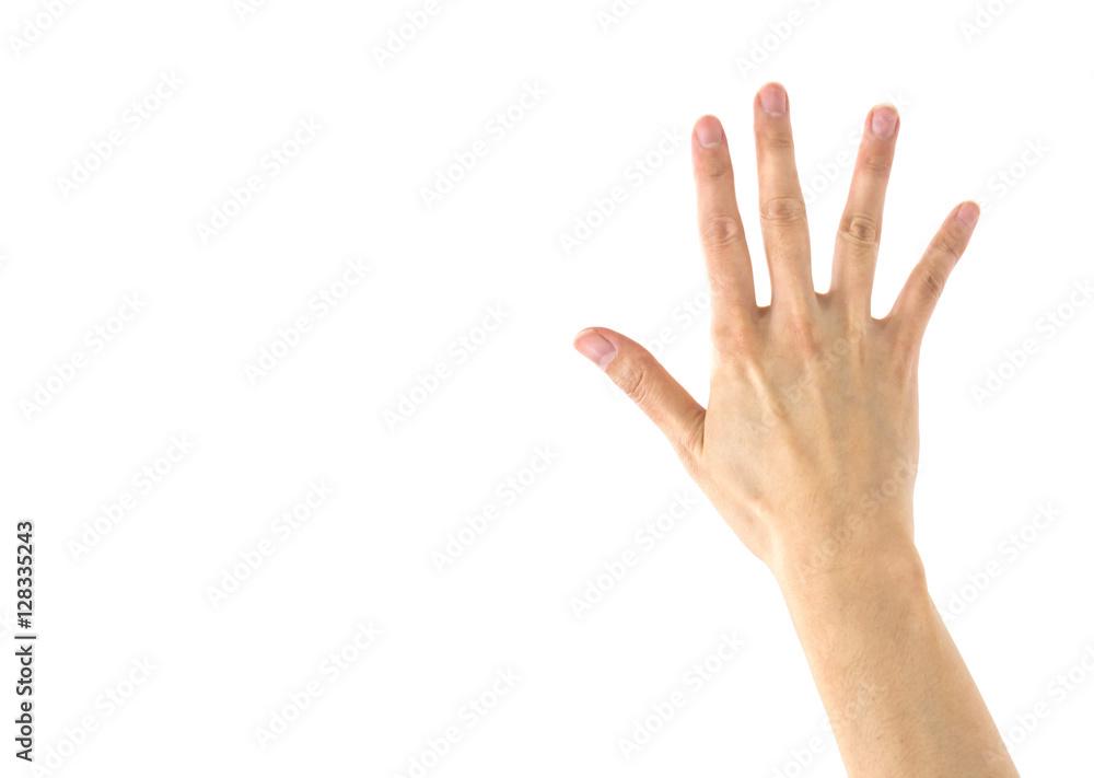 Fototapety, obrazy: 女性の手 白バック