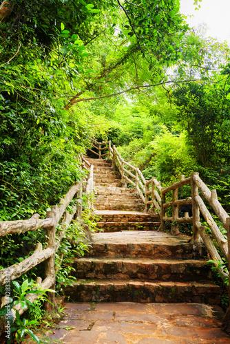 malownicze-kamienne-schody-wsrod-lasow-tropikalnych