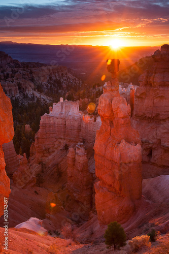 Thor's Hammer and hoodoos in Bryce Amphitheater at sunrise, Bryc Wallpaper Mural