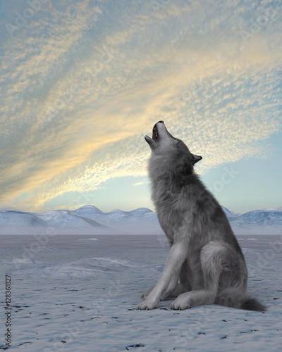3d render of a howling wolf on winter snow background Canvas Print