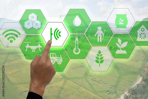 Fotografie, Obraz  Internet of things(agriculture concept),smart farming,industrial agriculture