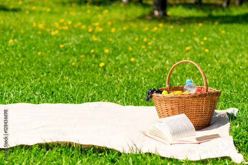 Aluminium Prints Picnic blanket and a basket of fruit for lunch in the summer park