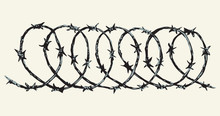 Barbed Wire. Vector Drawing