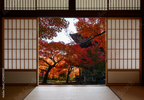 Foto op Plexiglas Japan Ancient pagoda and beautiful red fall maples seen through a traditional Japanese doorway in autumn