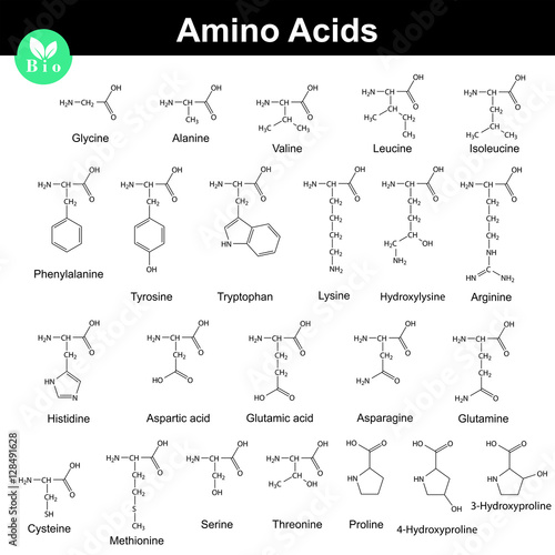 Photo Biogenic amino acids formulas