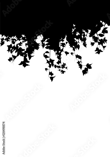 Photo sur Toile Oiseaux sur arbre Leaves silhouette isolated on white background