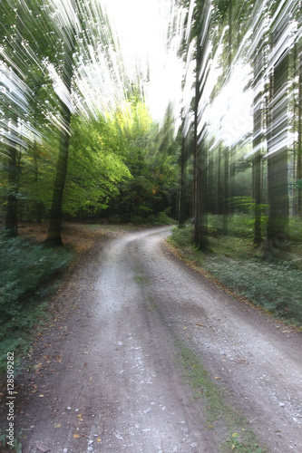 Fotografia, Obraz  Quickly on the forest road - zoom