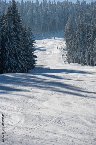 Fotografie, Obraz  Trasa narciarska na Czarnej Górze w Masywie Śnieżnika, Kotlina Kłodzka