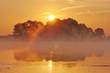 Sonnenaufgang an der Elbe- Biosphärenreservat Niedersächsische Elbtalaue