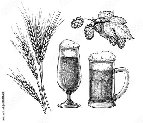 Fotografie, Obraz  Hops, malt, beer glass and beer mug