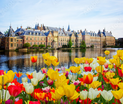 Photo Binnenhof Dutch Parliament , The Hague Den Haag at spring, Netherlands
