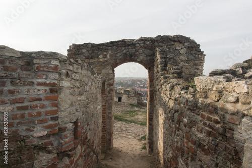 Foto op Aluminium Rudnes ruins of medieval castle