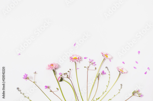 Foto op Canvas Bloemen Lay flat, wildflowers on a white background, floral pattern of flowers and blue petals, twigs of the plant, annual grasses
