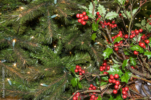 Garden Poster Roe Christmas tree. Merry Christmas and Happy New Year!