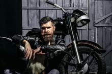 Bearded Man Hipster Biker
