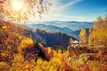 Panel Szklany Góry Majestic colorful forest